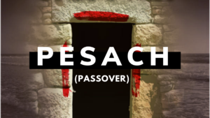 Pesach (Passover) - Assembly of Yahuah - Shabbat Message and Discussion