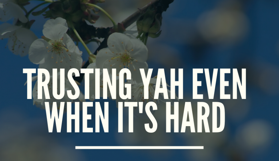 When Trusting Yahuah is Difficult - Blog Post